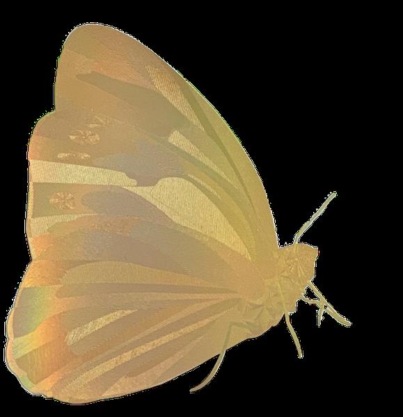 gold-foil-butterfly